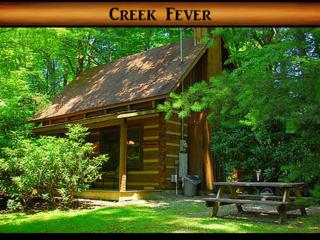 Creek Fever